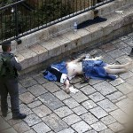 An Israeli border guard stands guard next to the body of a Palestinian who was shot dead by Israeli security forces after he stabbed two police officers on October 10, 2015 outside the Old City in east Jerusalem, in the second such attack in the same area. The attack took place by the Damascus Gate, metres (yards) away from where a Palestinian teen stabbed two Jews before being shot dead by police earlier in the day.    AFP PHOTO / AHMAD GHARABLI